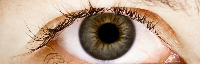 Какое зрение бывает с минусом