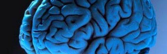 Инфаркт головного мозга: что это такое, симптомы и последствия