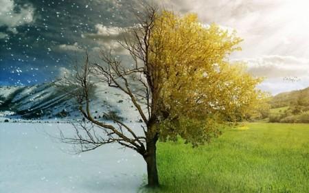 Климатические факторы влияния
