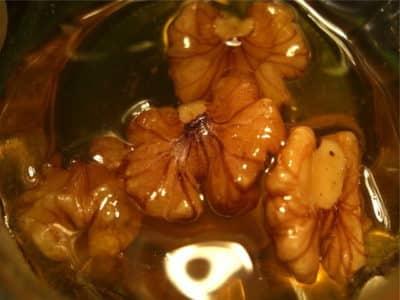 Вкусный рецепт: орехи с медом