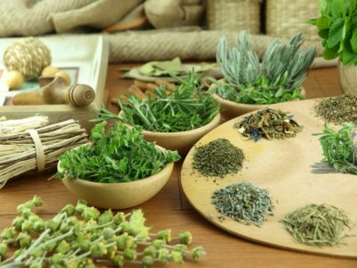 Целебное действие лекарственных трав