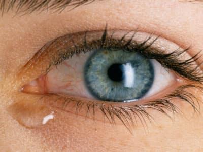 Глазные капли антисептического действия фото