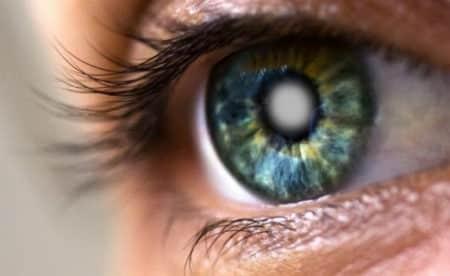 Роговица глаза фото