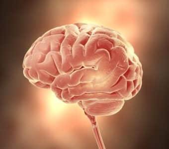 Дисциркуляторная енцефалопатия головного мозга 2, 3 степени: что ето такое, симптоми, прогнози