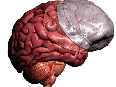 Этиология развития недуга фото